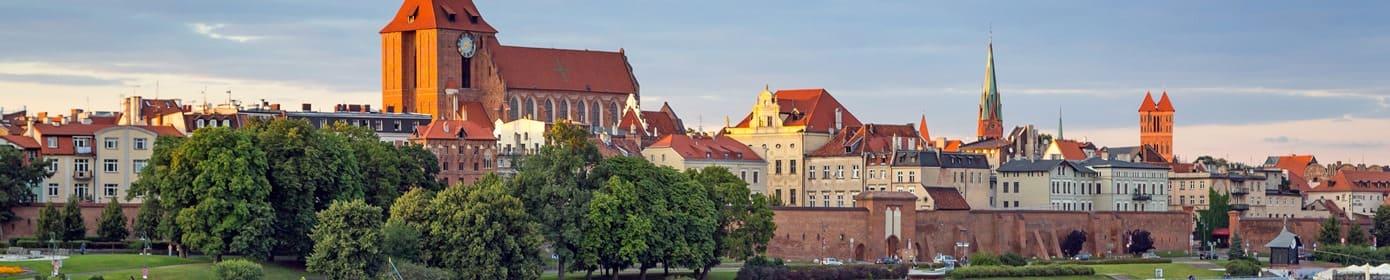 tworzenie strony internetowe Toruń www